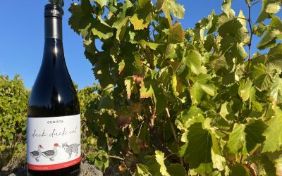 Introducing our first Grenache: 2020 'Duck, Duck, Cat'